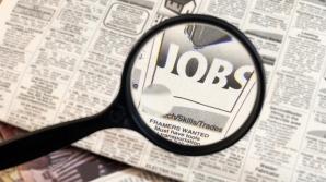 Cele mai multe joburi vacante în străinătate se adresează cadrelor medicale, inginerilor şi specialiştilor IT