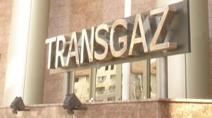 Guvernul a avizat trecerea Transelectrica şi a Transgaz de la Economie la Finanţe