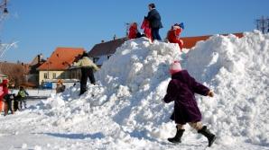 Şcolile din Capitală vor fi deschise luni