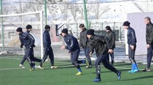 Poli Timişoara nu a primit licenţa de la UEFA