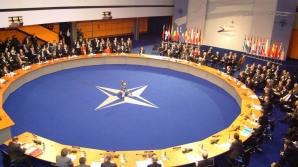 NATO angajează ingineri, IT-işti, cercetători şi funcţionari