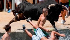 Un taur furios şi-a alergat spectatorii