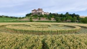 Un cerc misterios în lanurile din Torrechiara, Italia / FOTO: Travelmax / Dreamstime.com