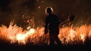 Incendiu devastator în Deltă