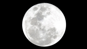 Luna / FOTO: Roscosmos