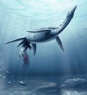 Plesiozaurii năşteau puii vii / FOTO: S. Abramowicz, Dinosaur Institute, NHM