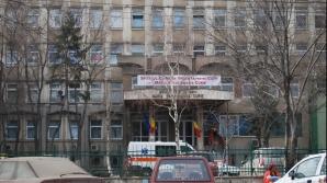 Şobolani în curtea spitalului Budimex din Capitală