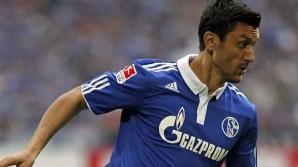 Marica a ajuns la Schalke în vara 2011