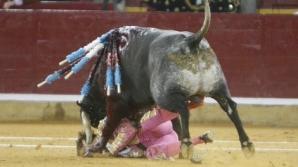 În timpul coridei, toreadorul de 39 de ani a alunecat, iar taurul cu care se lupta i-a bagat spaniolului coarnul în obraz, după care l-a scos prin ochi
