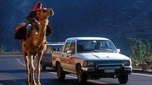 În eritreea se produc cele mai multe de circulaţie