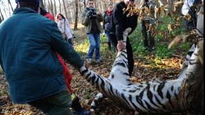 Directorul Grădinii Zoologice din Sibiu a demisionat