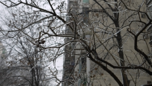 Freezing rain in Bucuresti