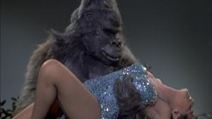 Gorilele dresate sunt folosite la testarea virginităţii în unele triburi