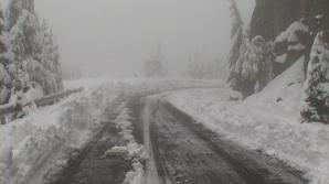 Turiştii blocaţi în zăpadă pot apela Telverde.