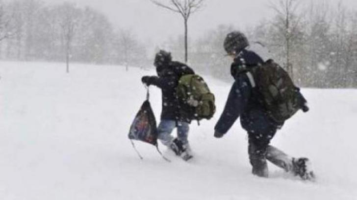 Viscolul şi zăpada închid şcolile