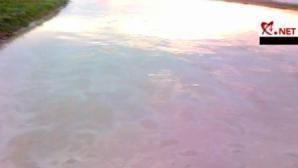Unda de poluare cu ţiţei a ajuns la lacul de acumulare Drăgăneşti
