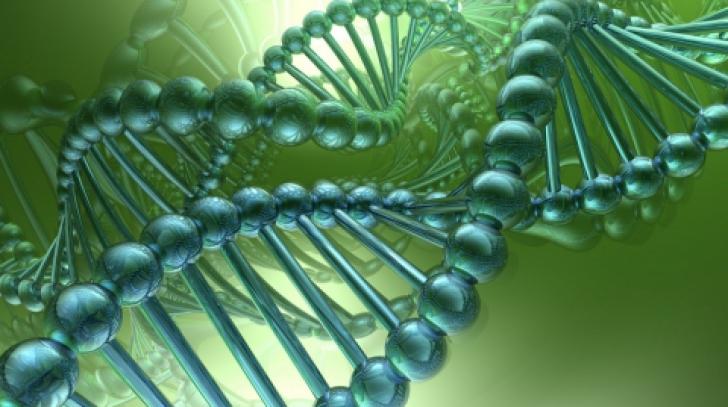 Cercetătorii români vor construi o bază de date genetică
