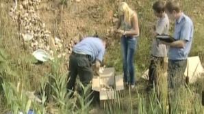 DESCOPERIRE MACABRĂ în Rusia: 248 de EMBRIONI UMANI au fost găsiţi într-o pădure