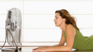 Căldura excesivă constituie un factor de stres pentru organism.