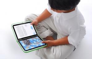 Manualele tradiţionale ar putea fi înlocuite cu ebook-uri