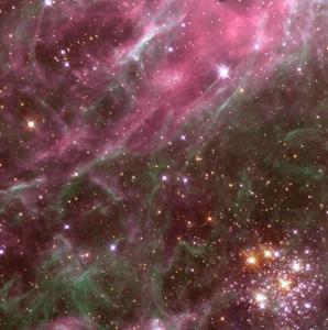Roiul stelar Hodge 301