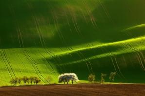 Moravia, Republica Cehă