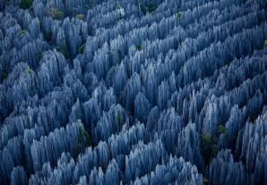 Pădurea de piatră - Yunnan, China