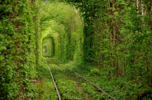 Tunelul Dragostei, Kleven, Ucraina