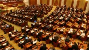 Un preot hunedorean a demisionat din funcţia de paroh pentru a candida la Camera Deputaţilor