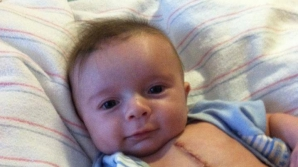 Joey, la 5 zile după operaţia pe cord