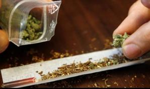 Marşul mondial pentru CANNABIS: mii de fumători cer legalizarea