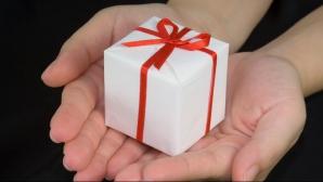 Ce cadouri au primit Roberta Anastase şi Valeriu Zgonea de la oficialii străini