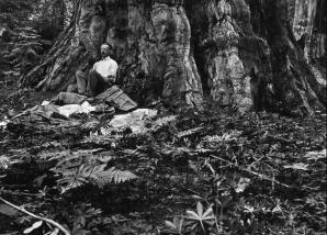1915 * CALIFORNIA, SUA - Gilbert H. Grosvenor, primul editor cu normă întreagă al National Geographic, se trezeşte după o noapte petrecută sub un arbore sequoia în prima sa excursie în munţii din California