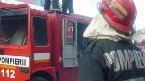 Incendiu puternic într-o pădure din Bacău. Hectare întregi sunt afectate