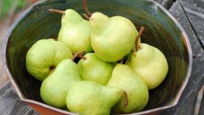 Dr. OZ: Cinci alimente care îmbunătăţesc digestia şi protejează stomacul