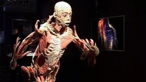 Spectacolul morţii. 200 de cadavre sunt expuse la Muzeul Antipa