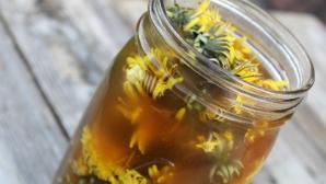Infuzia de păpădie cu miere, elixir pentru ficat şi rinichi / Foto: sustaincreateandflow.com