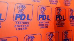 PDL mai pierde un senator. 'Demisionez din cauza tensiunilor din organizaţie'