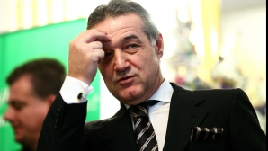 Ce spune avocatul lui Becali despre cererea de revizuire a hotărârii de condamnare