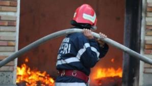 Incendiu la o cabană din pădurea Snagov