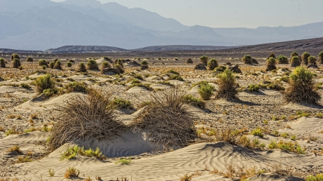 """Misterul """"rocilor călătoare"""" din Valea Morţii a fost elucidat"""