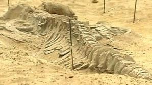 Descoperire importantă în deşertul din Peru