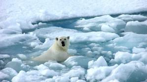 Cercetătorilor li s-a cerut să mintă în legătură cu încălzirea globală