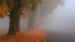 NOWCASTING. Cod galben de ceaţă