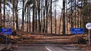 Drumul județean care se termină în mijlocul unei păduri