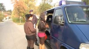 Bătaie între prostituate la Timișoara