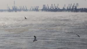 """Dunărea """"fierbe"""" - un fenomen rar şi spectaculos"""