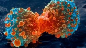 """CANCERUL, o boală foarte veche: """"Nu va fi, probabil, NICIODATĂ complet eradicat"""" - STUDIU"""