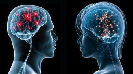 O expoziţie interactivă permanentă dedicată creierului uman, deschisă la Paris