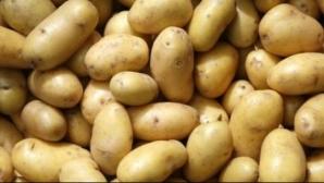 Remedii naturiste cu cartofi cruzi. Ce afecţiuni tratează